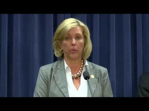 Sen. Rezin speaks in support of energy legislation to save jobs, local economies, and energy future