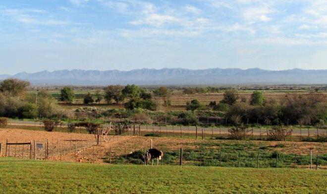 Mooiplaas in the beautiful Klein Karoo.
