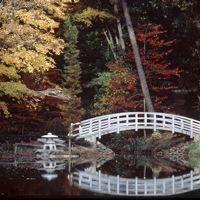 22 Best Duke Gardens Images On Pinterest Engagement Pics Engagement Photo Shoots And