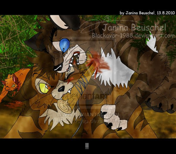 Warriors Forest Of Secrets Lexile: 32 Best Images About Warrior Cats On Pinterest