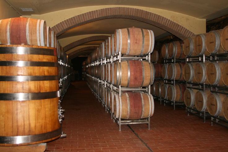 Capannelle Winery, Italy
