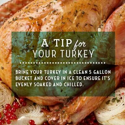Turkey brine, Turkey and Tips on Pinterest