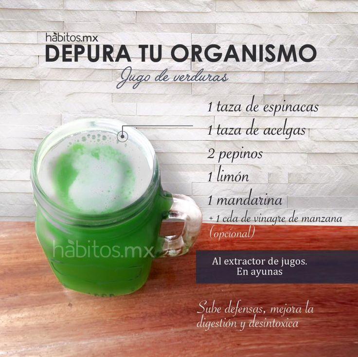 Hábitos Health Coaching | JUGO DE VERDURAS DEPURA TU ORGANISMO