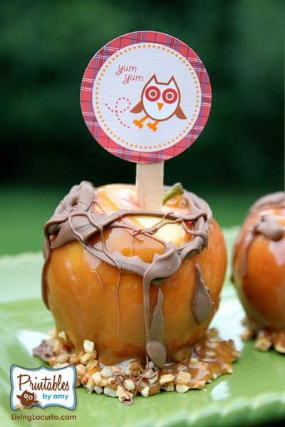 How adorable is this owl-themed camping party from @Amy Locurto? Perfect for fall, too.