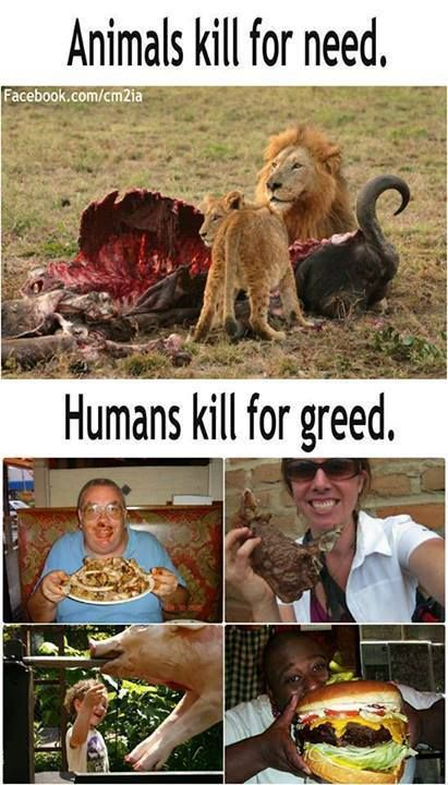 Killing animals supports greed.  Greed supports the destruction of society, love & peace.