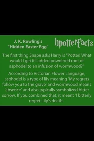 Harry Potter secret meanings