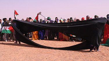 Natalia Espinel -Errantes del Sahara, acción colectiva, Sahara occidental, 2014