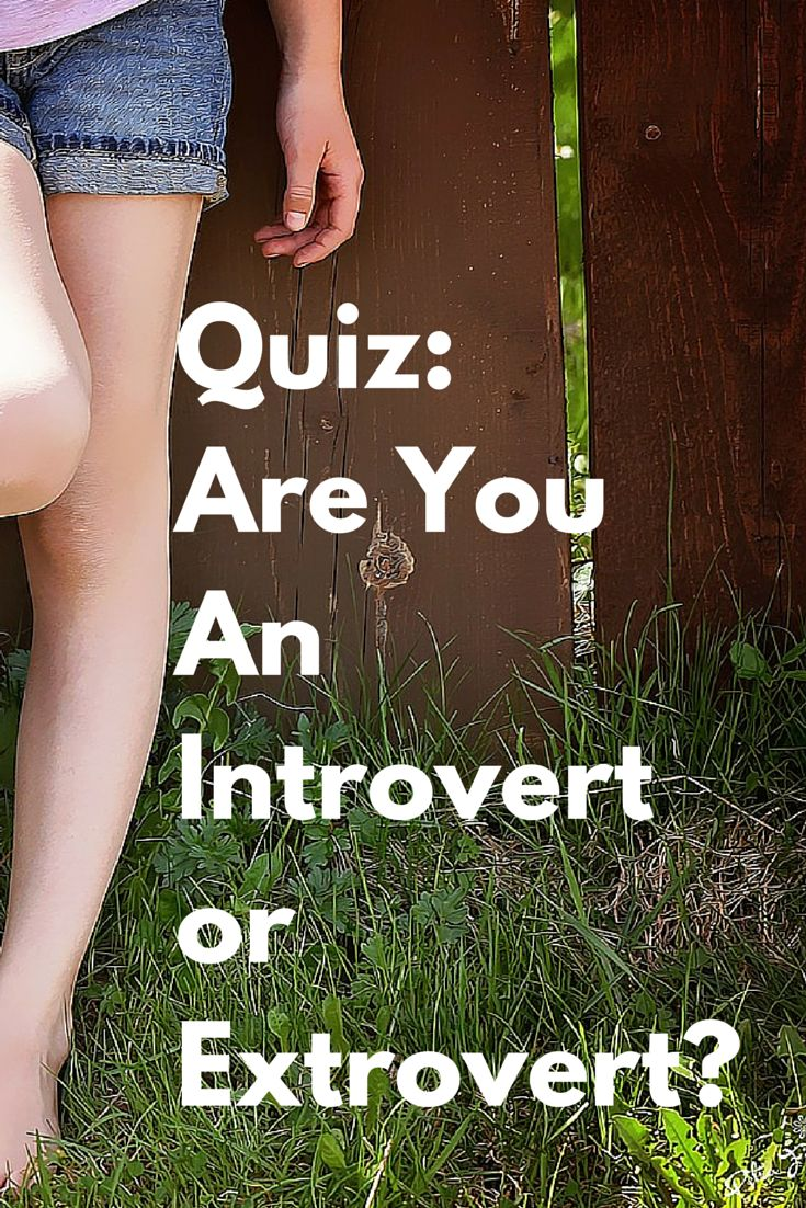 Are you an introvert or extrovert? Take the quiz to find out. http://www.quietrev.com/the-introvert-test/