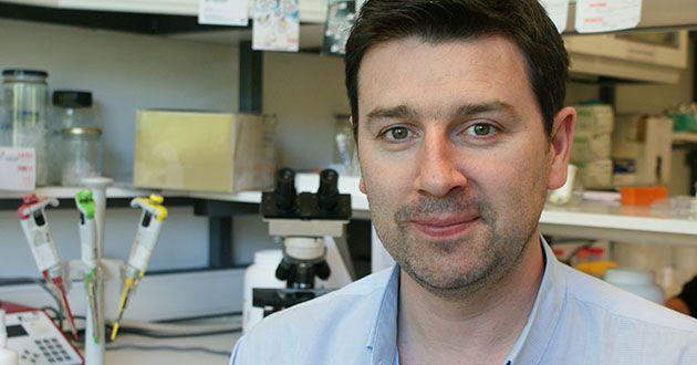 Investigador do Instituto de Biologia Molecular e Celular é o vencedor da edição 2015 do prestigiado Louis-Jeantet Young Investigator Career Award (YICA).