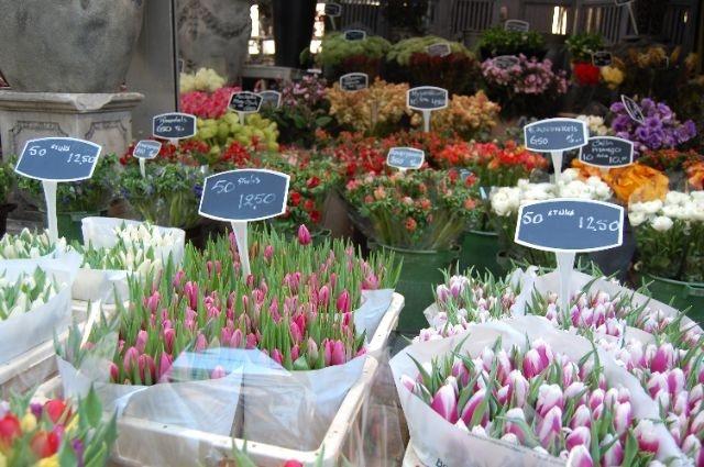 Amsterdam tulip/flower market