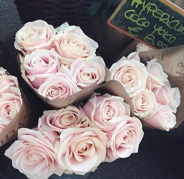 Roses On We Heart It