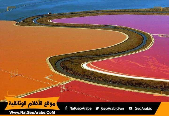 Wonderful Pictures - Photos - Community - Google+