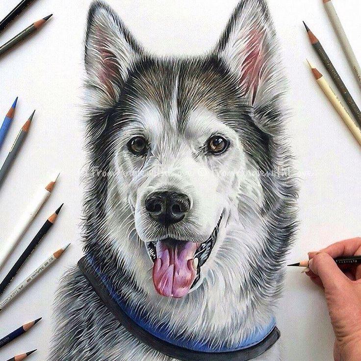 by Angie, UK  @inkedone #inkedone #inkedoneart #deawing #draw #drawingpencil #artcollective #artgallery #animal #dog #dogdrawing #animaldrawing #animalart #pencil #drawingart #realisric #realisticdrawing