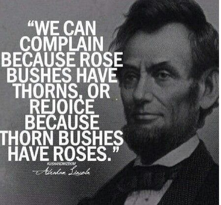 """""""We can complain because rose bushes have thorns, or rejoice because thorn bushes have roses."""" Abraham Lincoln"""