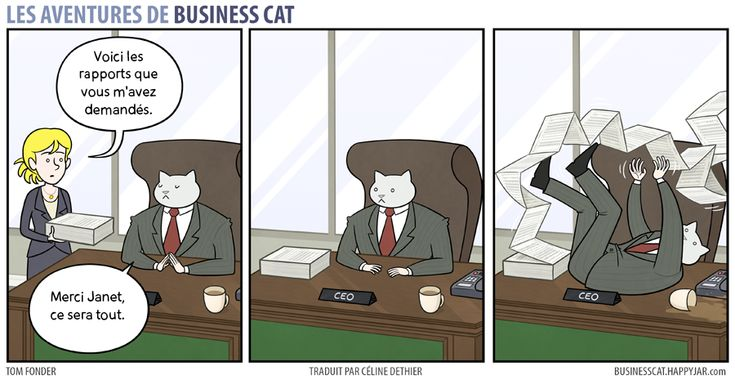 business-cat-8