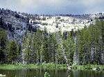 El Bosque Boreal se encuentra en el Hemisferio Norte entre las latitudes 50º y 60º N donde los inviernos son largos y fríos. El Bosque Forest...