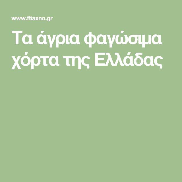 Τα άγρια φαγώσιμα χόρτα της Ελλάδας