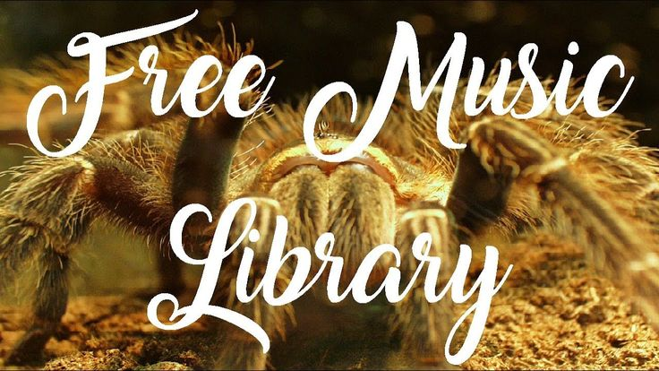 Royalty Free Music  | I Keep On Moving - Dj Quads #freemusic #nocopyright