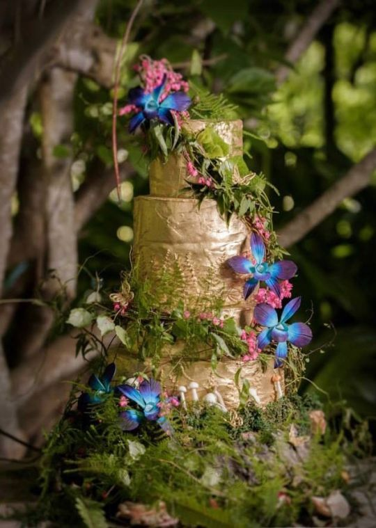 Best 25 Enchanted Forest Cake Ideas On Pinterest