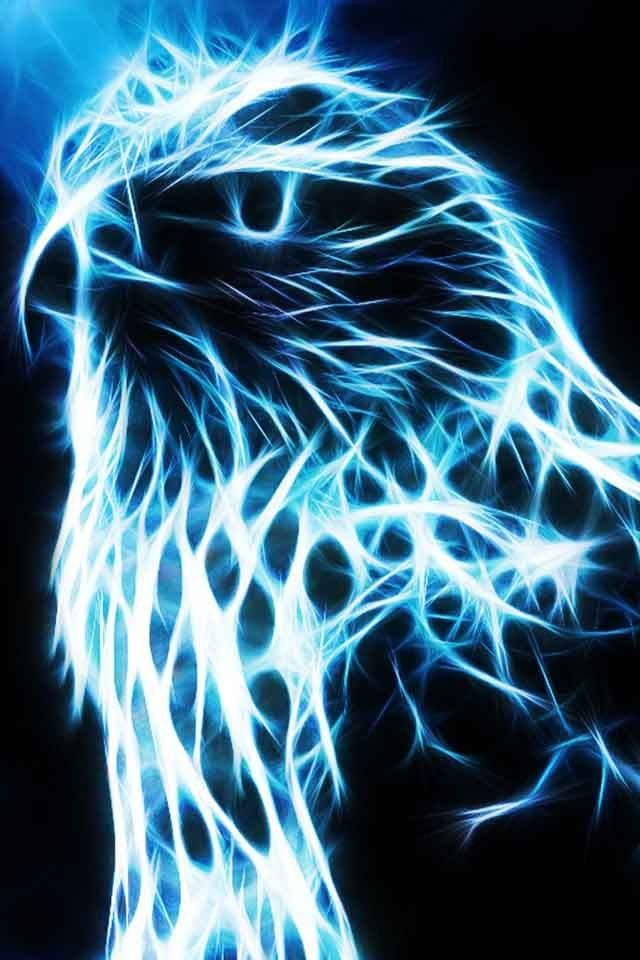 1000 images about wallpapers on pinterest eagle - Neon animals wallpaper ...