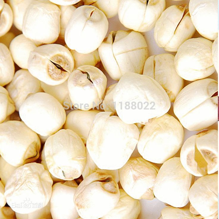 Купить товарAtacado 450 gChinese специальности семена лотоса улучшить память природный диетическое питание антигипертензивных лечение бессонницы в категории Сушеные фруктына AliExpress.                           2014 Лучшее качество мармелад Последние производства китай