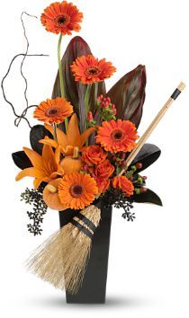 Classic bright orange gerberas and lilies contrast with the black vase and dark leaves. Witches broom is a typical Halloween icon.