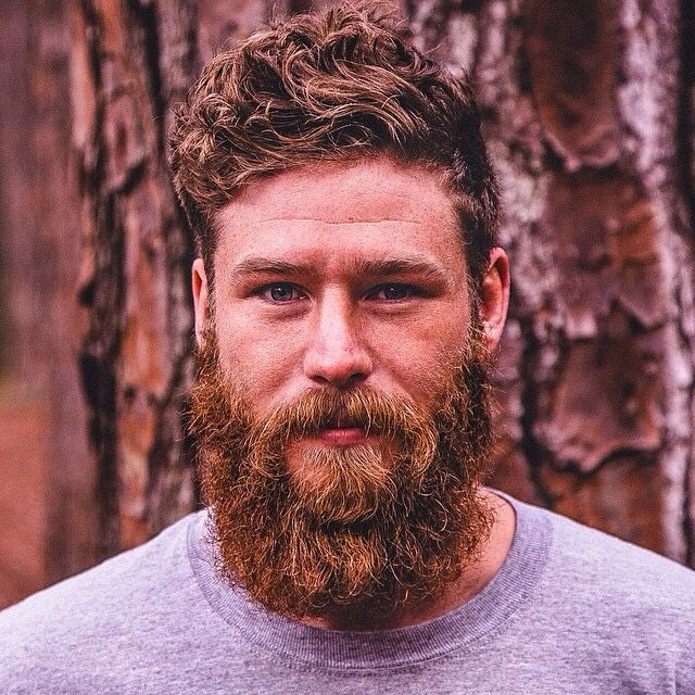 Use beard oil daily as well as a good comb through to er yours looking as healthy as his!