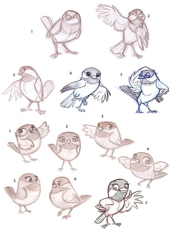 Cartoon Animal Character Design : Best bird drawings ideas on pinterest simple