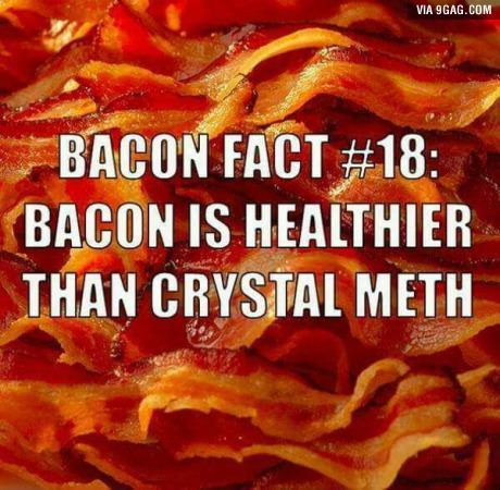 Bacon Facts