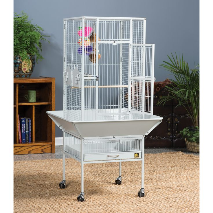 cheap budgie cages for sale