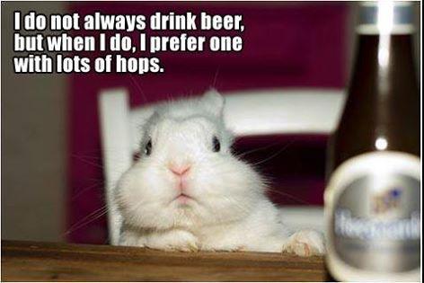 Hops...bunny...get it :)