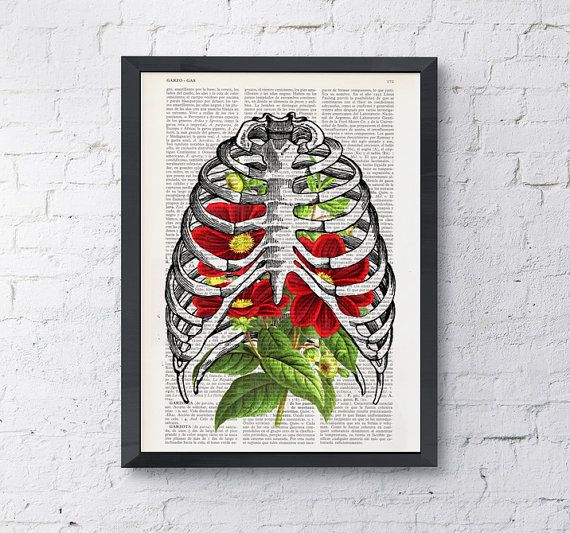 Hey, I found this really awesome Etsy listing at https://www.etsy.com/listing/211539706/rib-cage-with-dhalias-human-anatomy