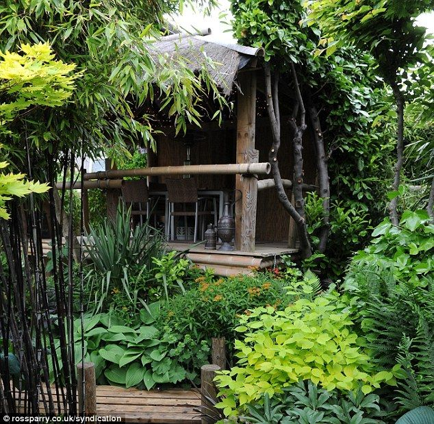 The tropical garden even has a wooden hut in the middle of it where Mr Wilson can entertain his guests