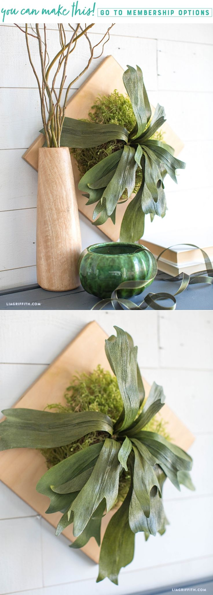 (Fern)ished by the Forest 🌿🌲 Mount this staghorn fern inside your own home to give your walls some greenery and fresh air. We used our double-sided crepe paper and mod podge to achieve this unbelievably realistic gloss texture. We'll guide you through this technique here https://liagriffith.com/mounted-crepe-paper-staghorn-fern/⠀⠀⠀⠀⠀⠀⠀⠀⠀ *⠀⠀⠀⠀⠀⠀⠀⠀⠀ *⠀⠀⠀⠀⠀⠀⠀⠀⠀ *⠀⠀⠀⠀⠀⠀⠀⠀⠀ #fern #staghorn #forest #forests #diy #diyidea #diyideas #diyproject #diyprojects #diydecor #diyhome #homedecor…