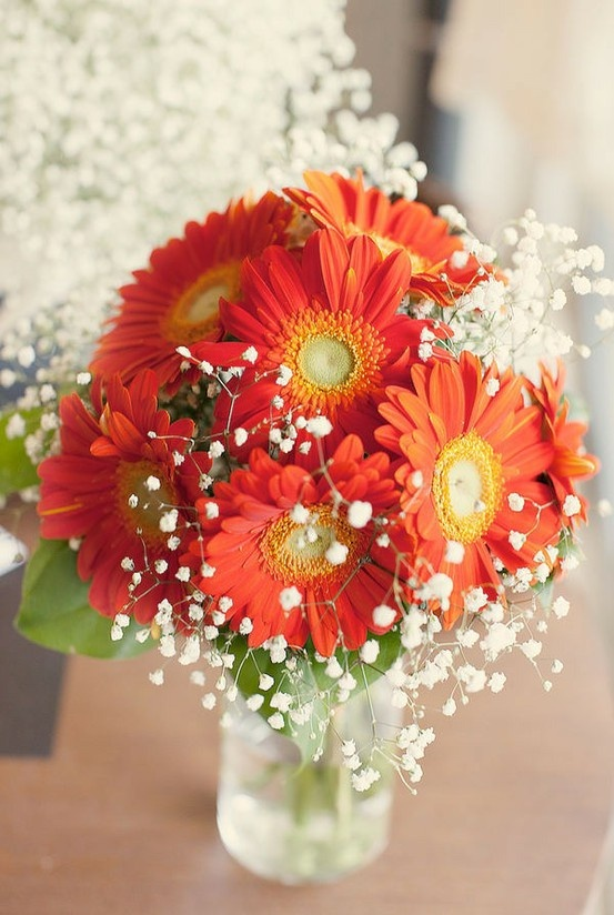 Baby's breath with gerber daisies but with white daisies or even carnations