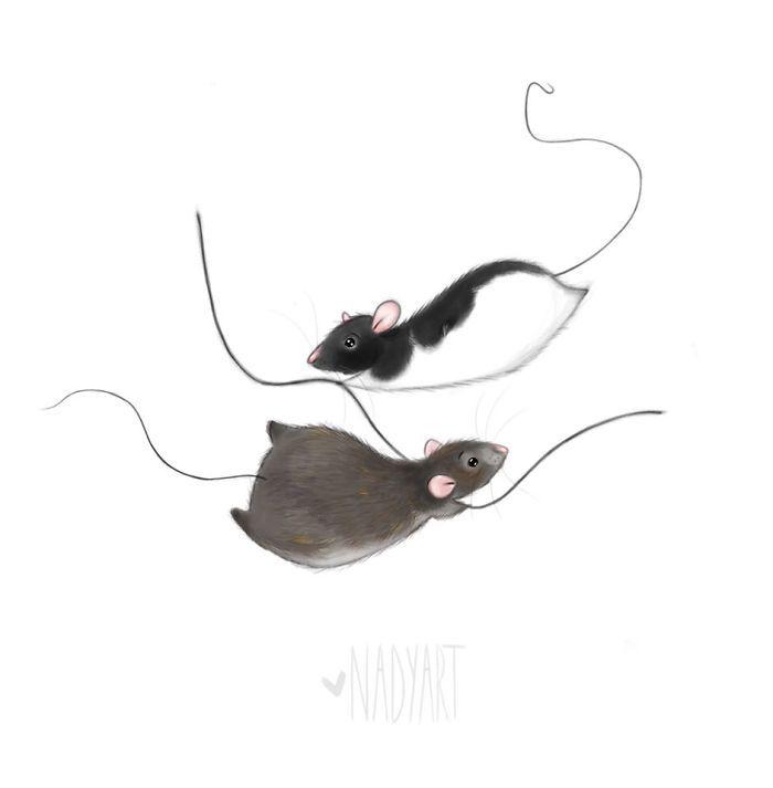 Dutch Artist Illustrates Rats To Show Their Cute Side | Bored Panda
