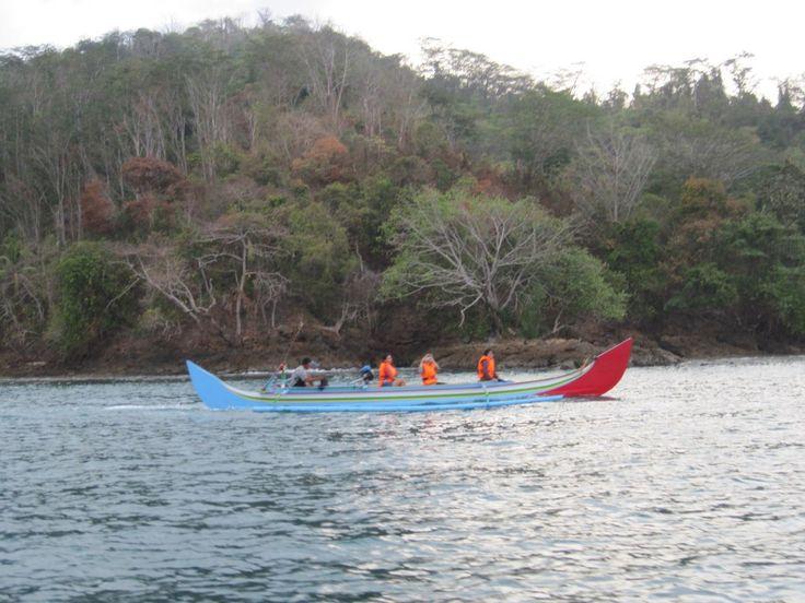 Open Trip Teluk Kiluan Lampung, Perjalanan Laut Bersama Lumba Lumba