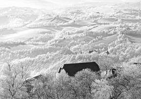"""L'hiver à Noailhac (Corrèze) - 1er prix de l'édition """"La nature en hiver"""""""