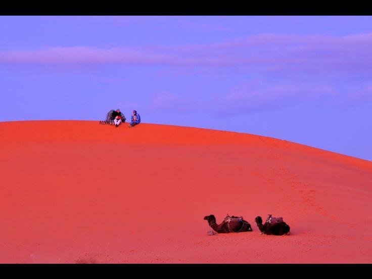 モロッコの夜明け サハラ砂漠