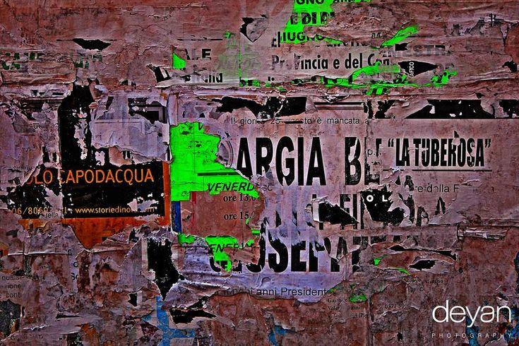 Sienna Posters  Deyan Grujovic Photo By DEYAN PHOTOGRAPHY