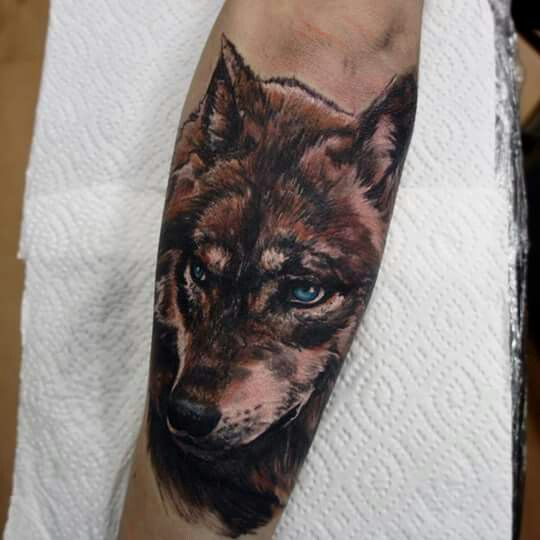 24 best images about tattoos and designs on pinterest for Wolf eyes tattoo designs