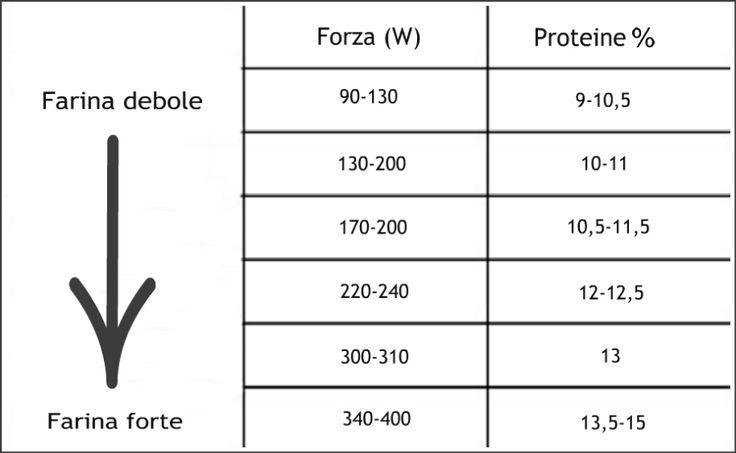 Forza delle farine (W): come riconoscerlaPer esempio, se in una determinata ricetta viene richiesto l' utilizzo di una farina forte (W da 340 a 400), al supermercato dovete cercare una farina con contenuto di proteine pari al 13,5-15% (cioè da 13 a 15 g di proteine ogni 100 g di farina).
