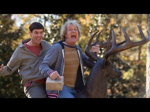 http://pinterest.com/pin/7248049375249134/ http://pinterest.com/pin/7248049375259814/  Dumb and Dumber To - Official Trailer Premiere