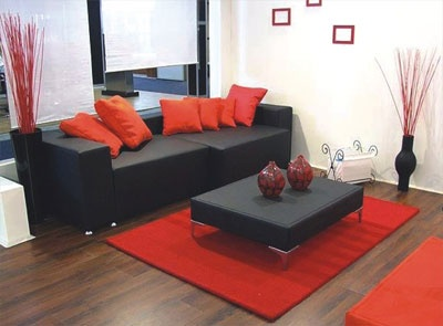 11 best Red and Black Interior images on Pinterest Living room
