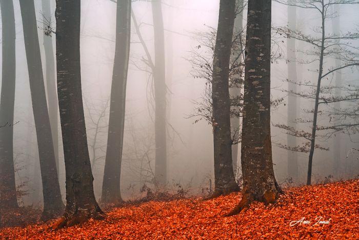 Fotografia utilizatorului Ionut Anei din categoria Fotografia de peisaj a fost realizata cu Nikon D7100