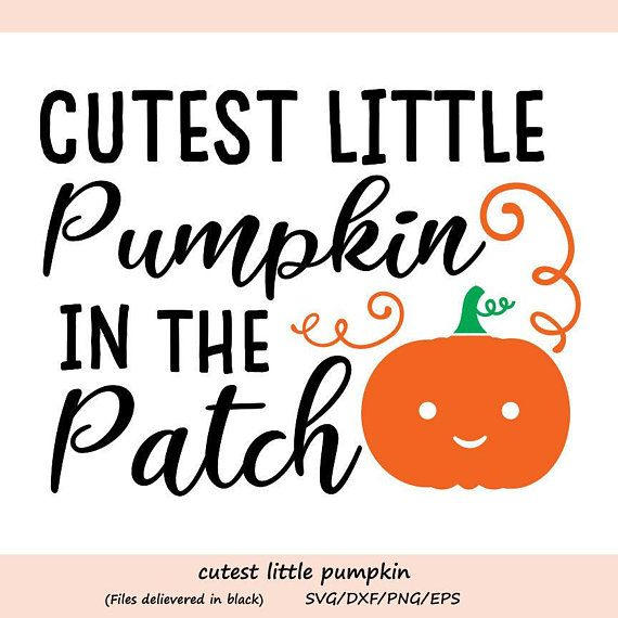 Cutest Pumpkin In The Patch Svg Thanksgiving Svg Pumpkin Etsy In 2020 Cute Pumpkin Cricut Svg