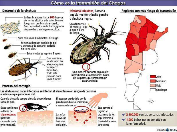 MAL DE CHAGAS: Es una enfermedad parasitaria generalmente crónica