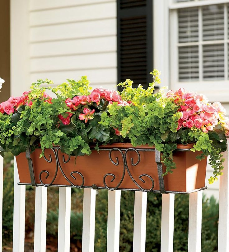 32 Best Deck Rail Planters Images On Pinterest: 39 Best Images About Planters Over Railings On Pinterest