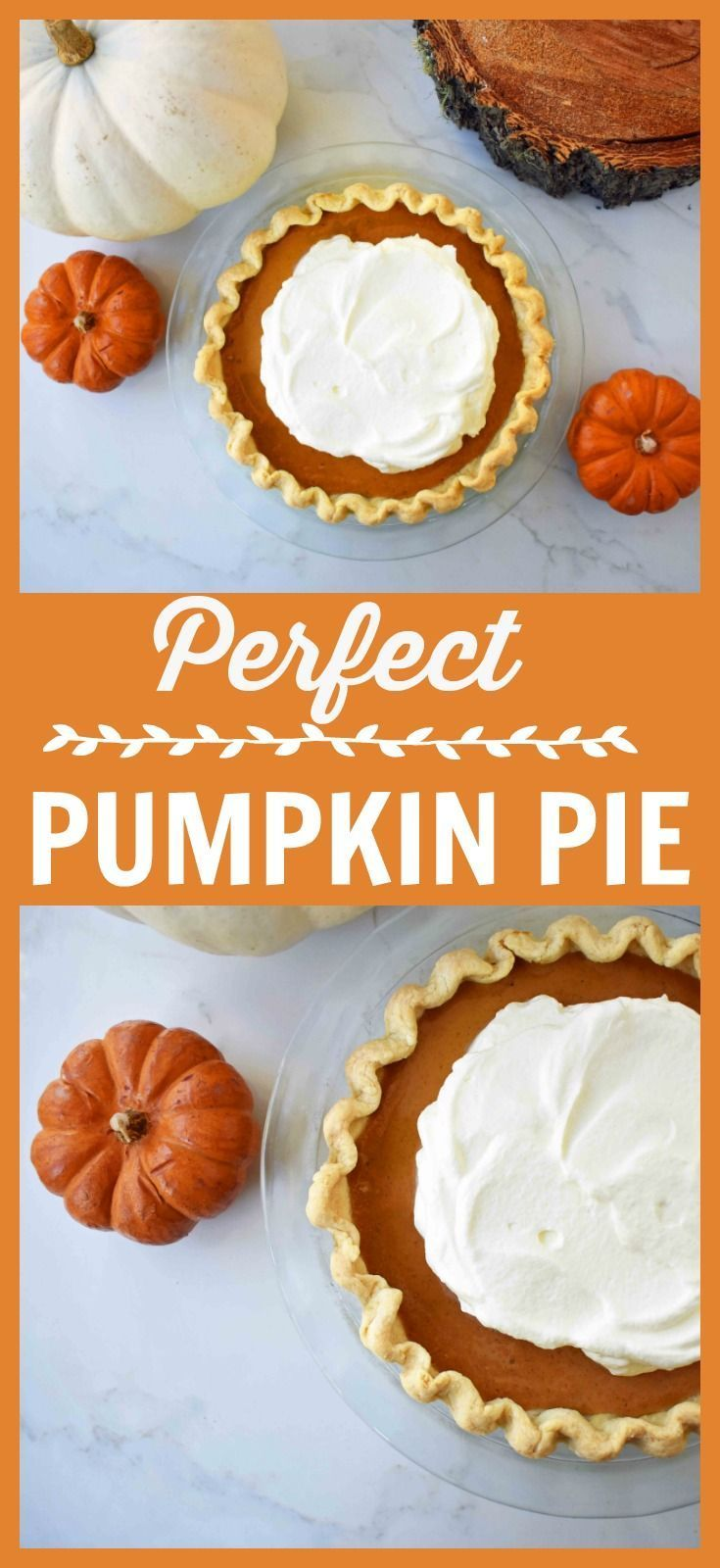 The Perfect Pumpkin Pie Is Silky Smooth Using Sweetened Condensed Milk Eggs And Warm Perfect Pumpkin Pie Pumpkin Pie Recipes Sweetened Condensed Milk Recipes