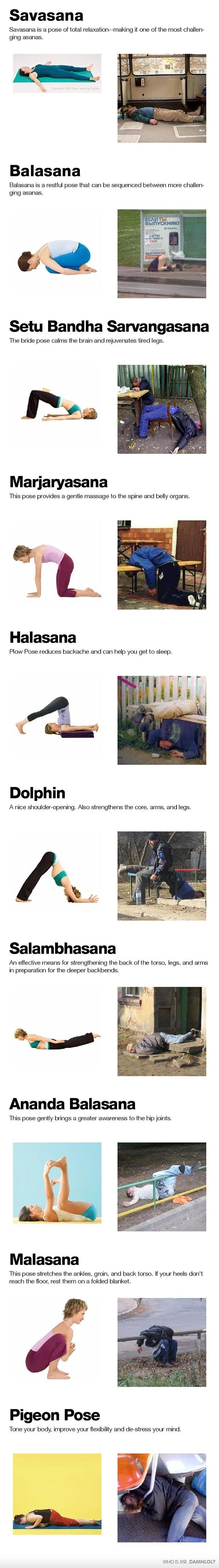 Yoga vs. Vodka: Fit, Laugh, Funny Pictures, Yoga Poses, Funny Stuff, Drunk Yoga, Humor, Vodka, Funny Yoga